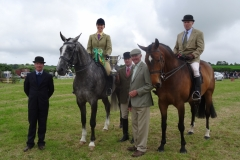 Horse-champion